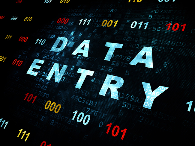 Data Entry Services pdf, excel and word