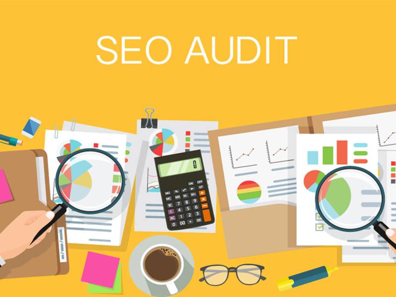 White Label SEO Audit and Content Analysis Report