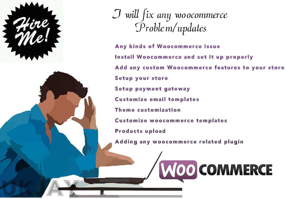 I can fix any woocommerce Problem/updates