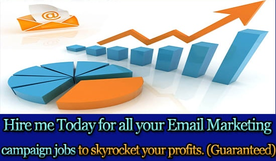 Will Write A Great Email For Your Marketing Campaign
