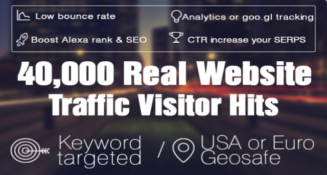 Deliver 40.000++ Real Website Hits Visitors From All Over The World within 25h