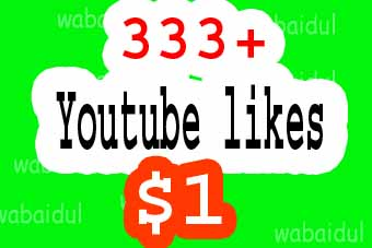 333+  YT  likes fast delivery