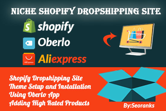 Create or Design Niche Dropshipping Shopify Website