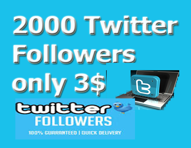2000+ Real and Active non drop PERMANENT Twi-tter Foll-owers