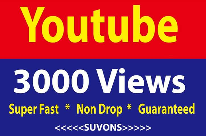 3000 HQ Youtube Video Views non drop