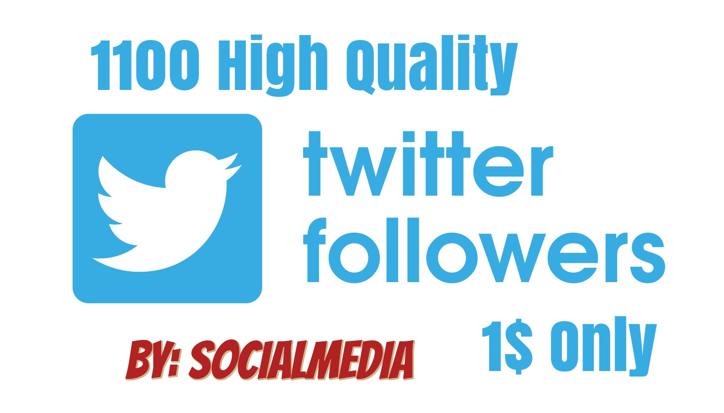Provide 1100 Twitter Followes High Quality  with warranty
