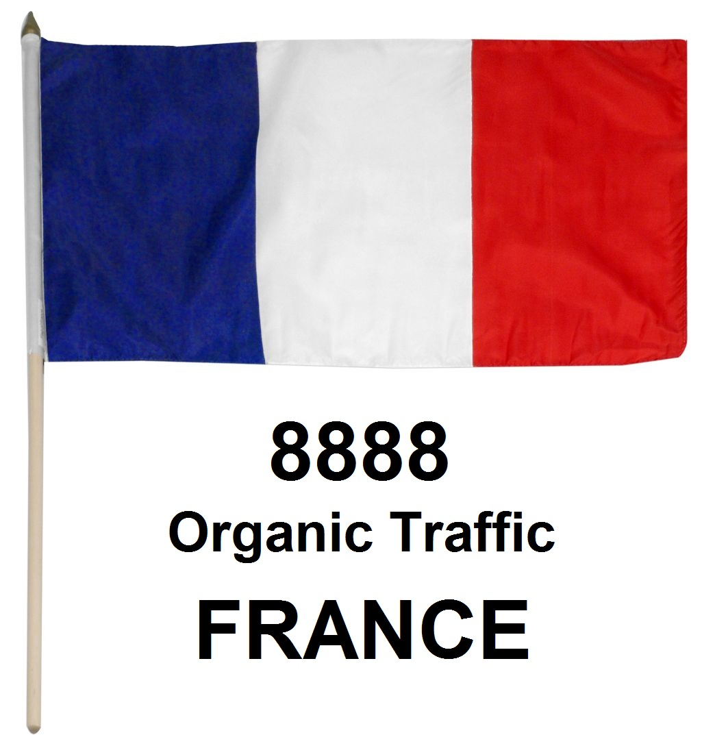 (Special Offer) 8888 Real Organic Traffic from France