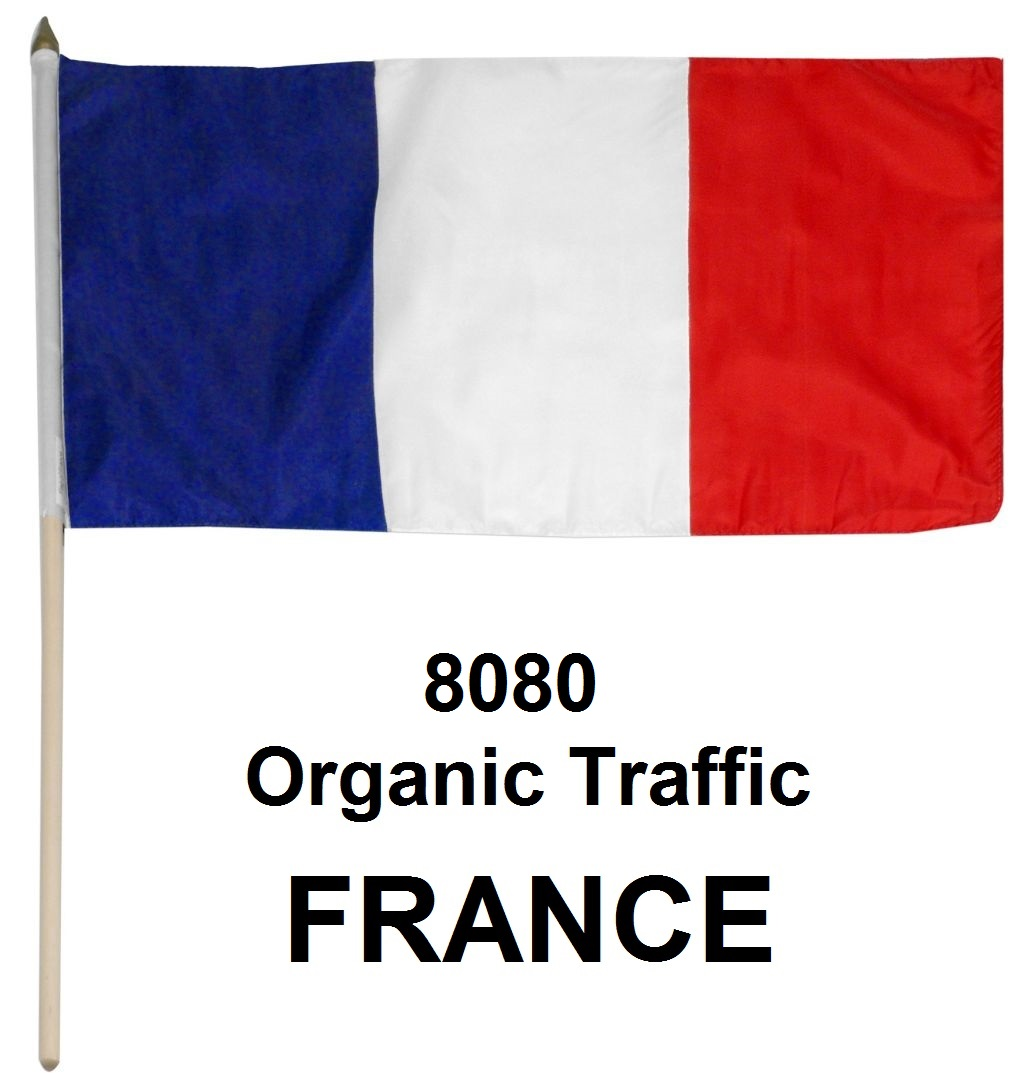 (Special Offer) More than 9090 Real Organic Traffic from France, USA