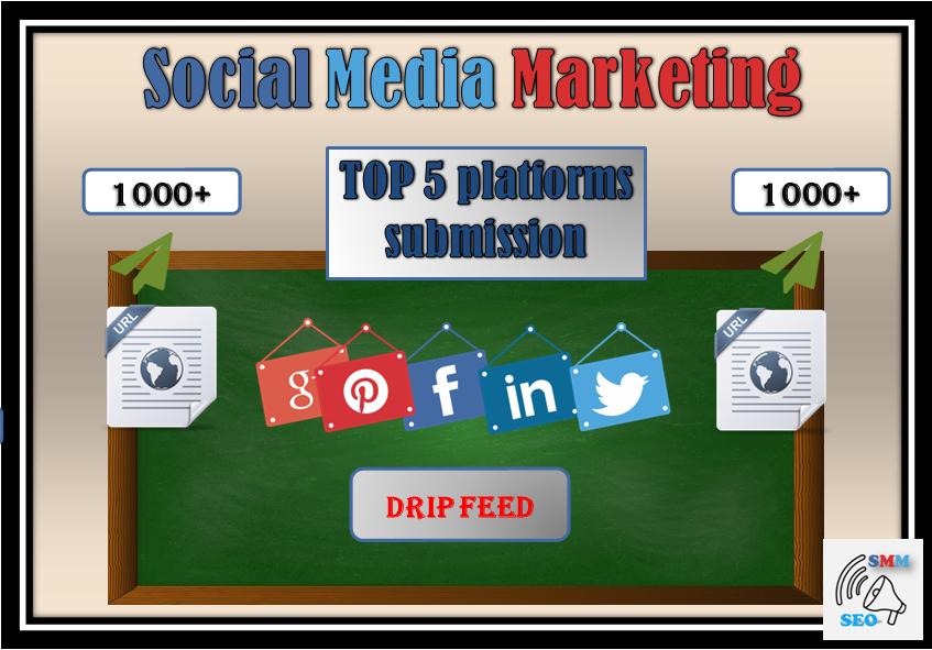 1000x manually shared Social Signals (drip feed)