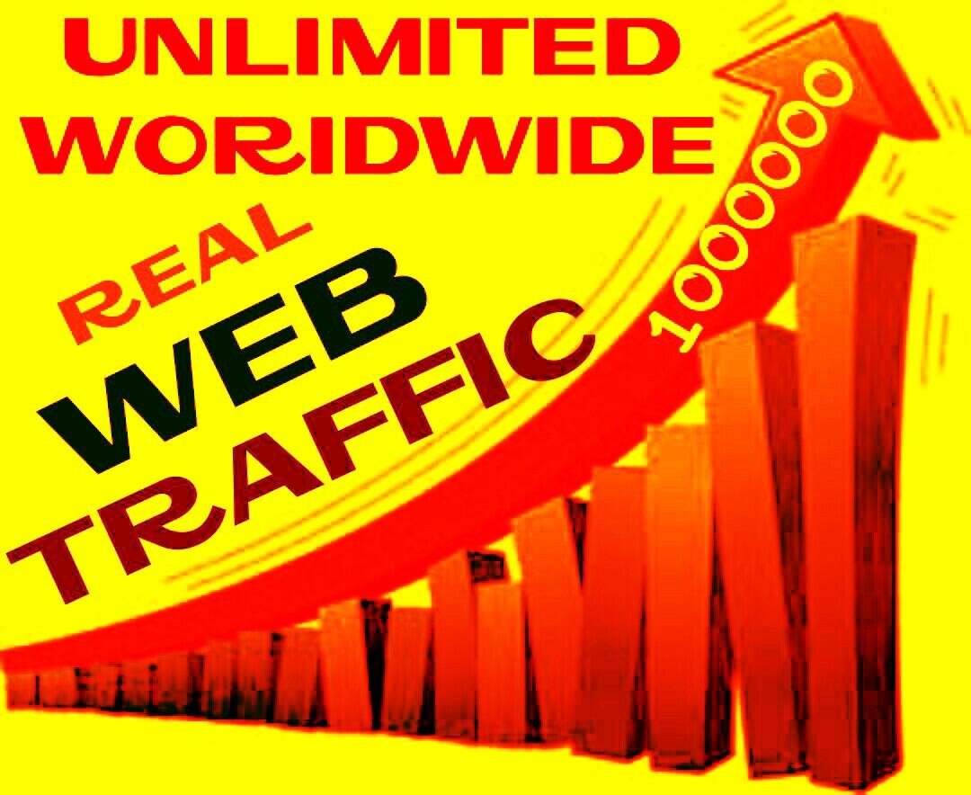 Drive 5000 worldwide Real Human Web Traffics professionally