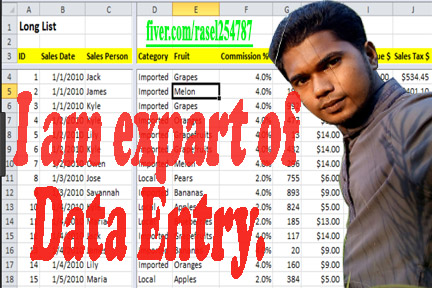 Do 250 Excel Rows Data Entry