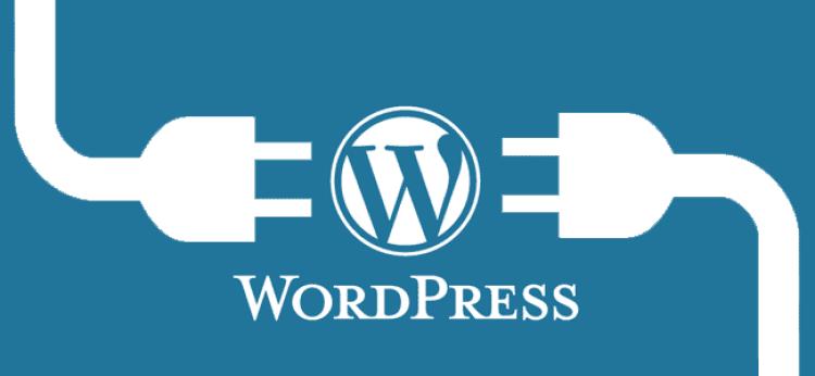 5 pages WordPress  Website