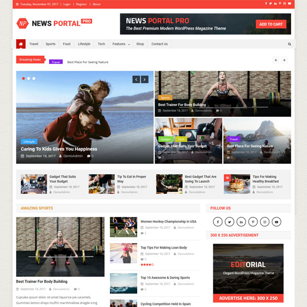 Will Give Full News Portal Design In Wordpress For You