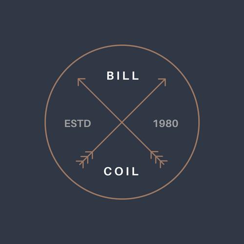 Create A Professional Logo Design in 24 Hrs