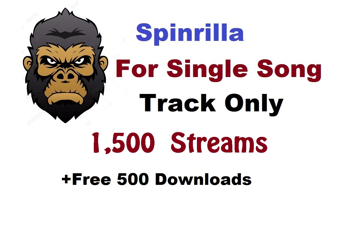 Single 2,000 play + 500 download for single track song spinrilla streams