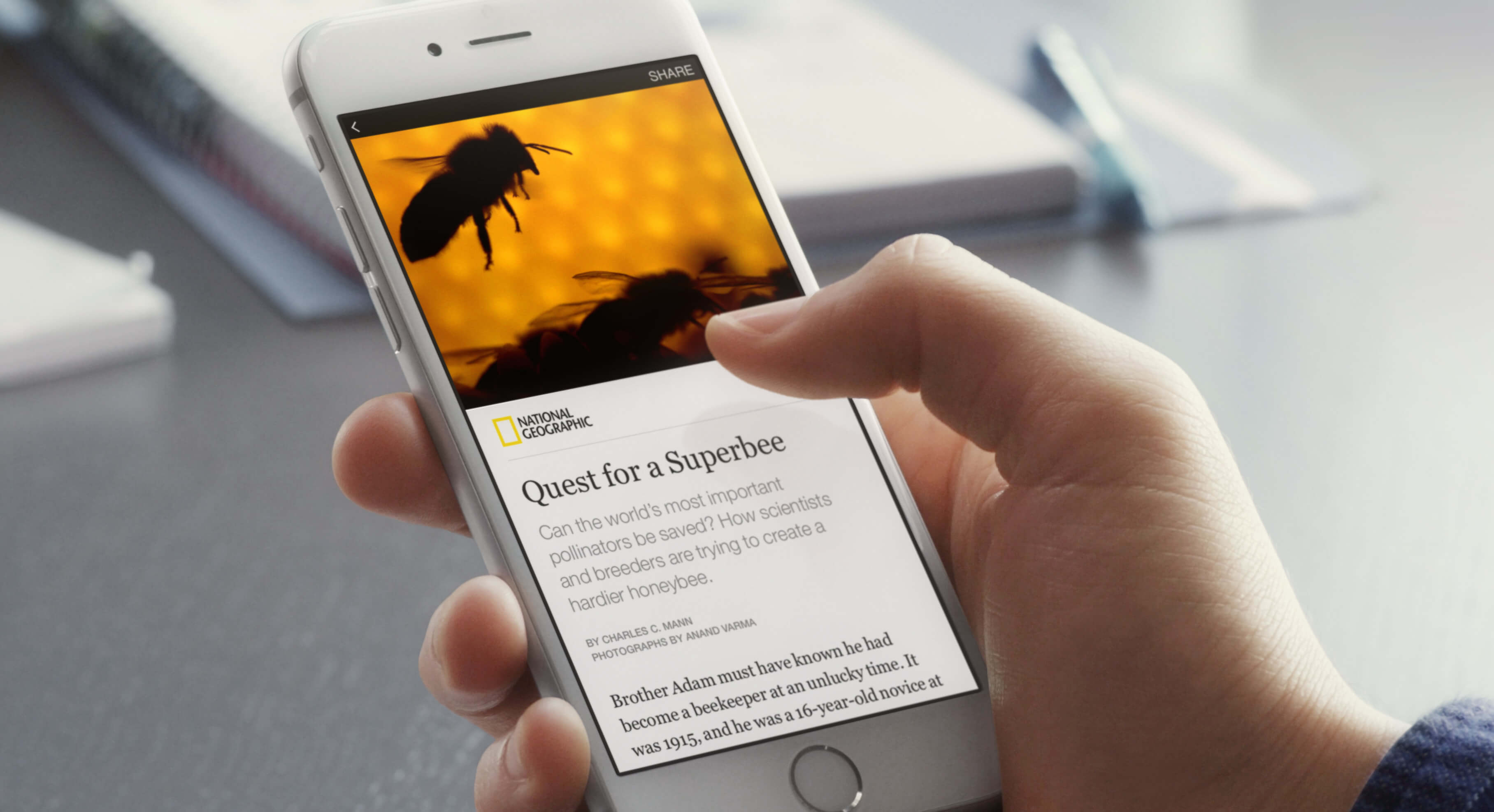 Setup Instant Articles For Your Website