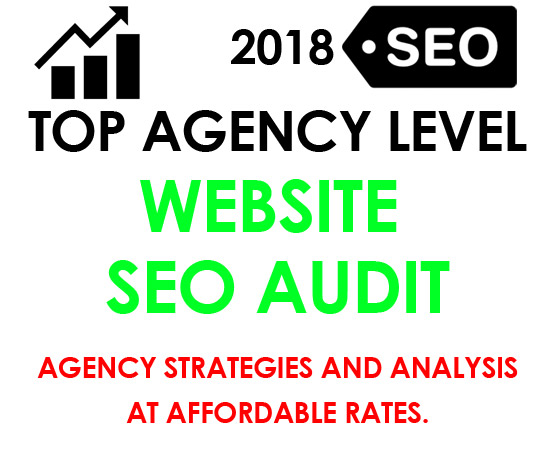 Top Tier Agency Level SEO Audit and website analysis 45+ criteria
