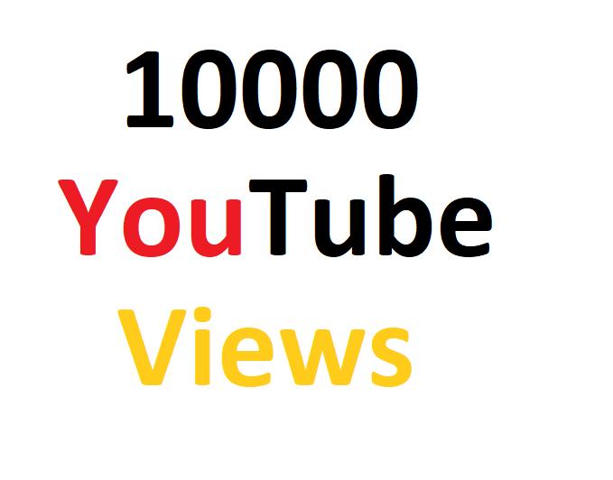 10,000High Quality Y-Tube Vie-ws Fully safe