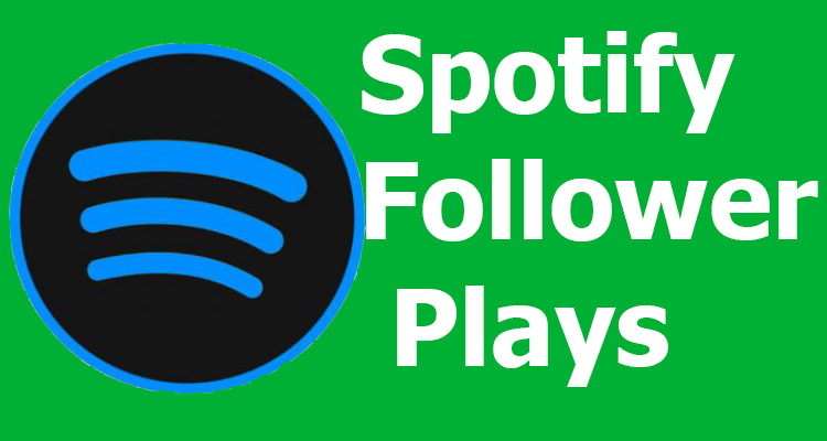 10,000+ USA Spotify Plays Real active Non drop or 5000+ USA Spotify Followers