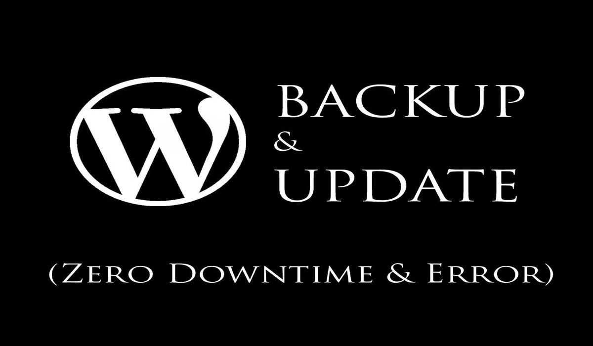 WordPress Backups & manually Updates WordPress version