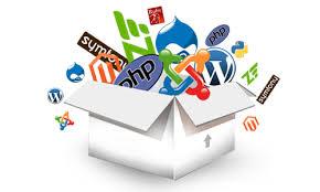 Web Development PHP/MySQL/CSS/JS/UI/UX CodeIgniter