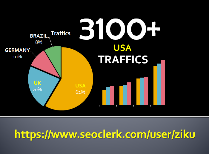 send 3100+ USA Web Traffics with Social Media Referra...