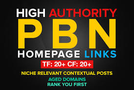 12 High PA DA TF CF Homepage PBN BACKLINKS TO SKYROCKET YOUR SERP