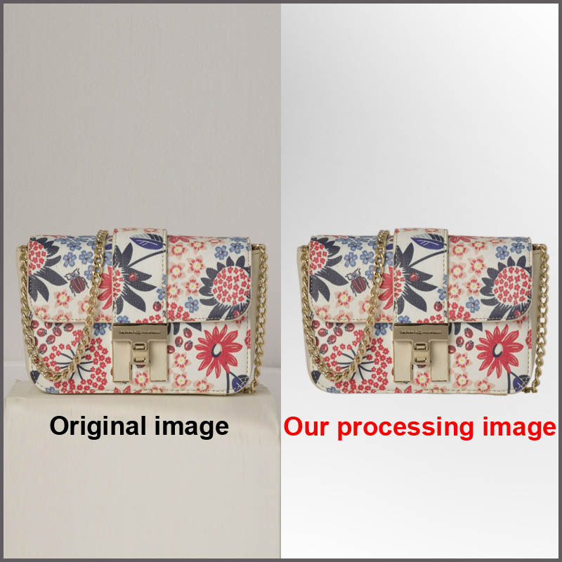 5 Image Clipping path Money-Back Satisfaction Guaranteed