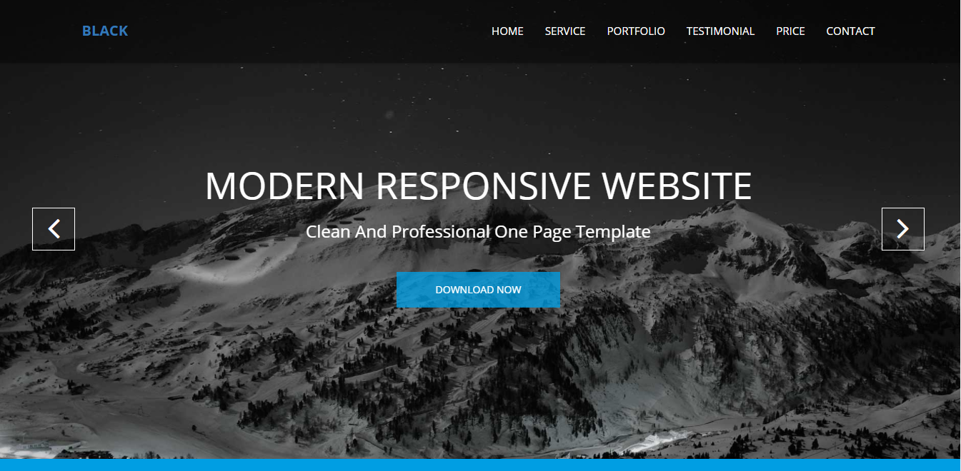 Design Modern Responsive Website In A Professional Manner