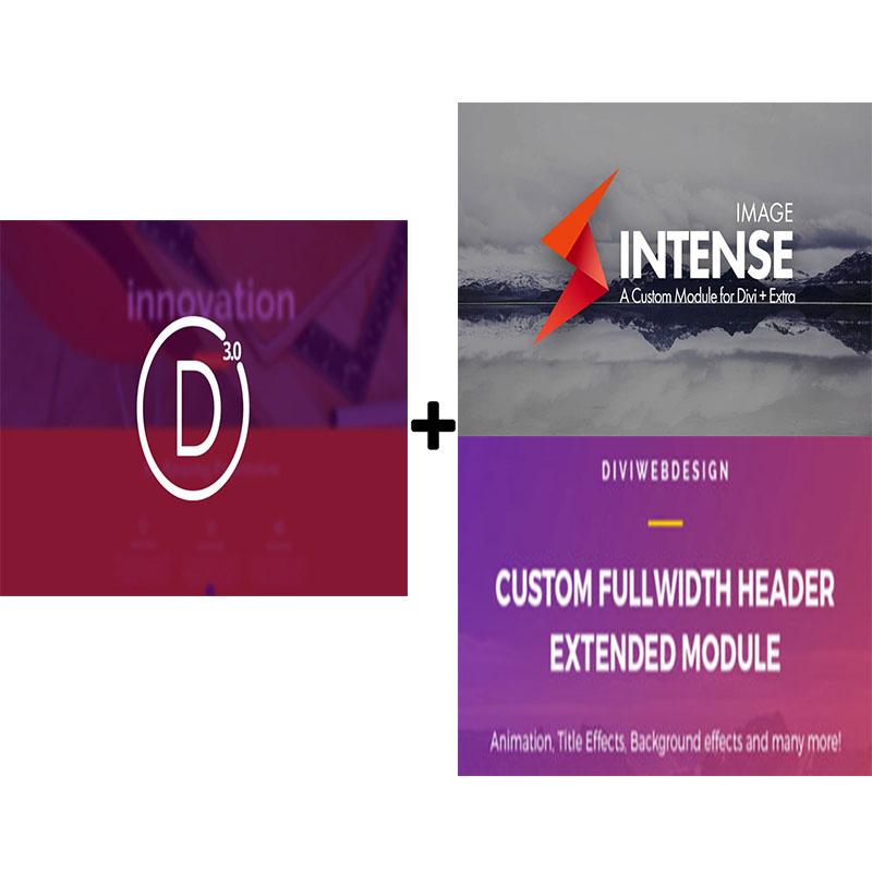 Install Divi Theme And 2 Wordpress Divi Plugins