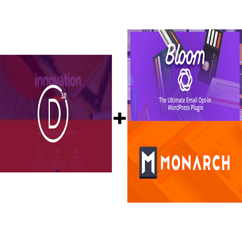 Install DIVI Theme And 2 Wordpress extra DIVI Plugins
