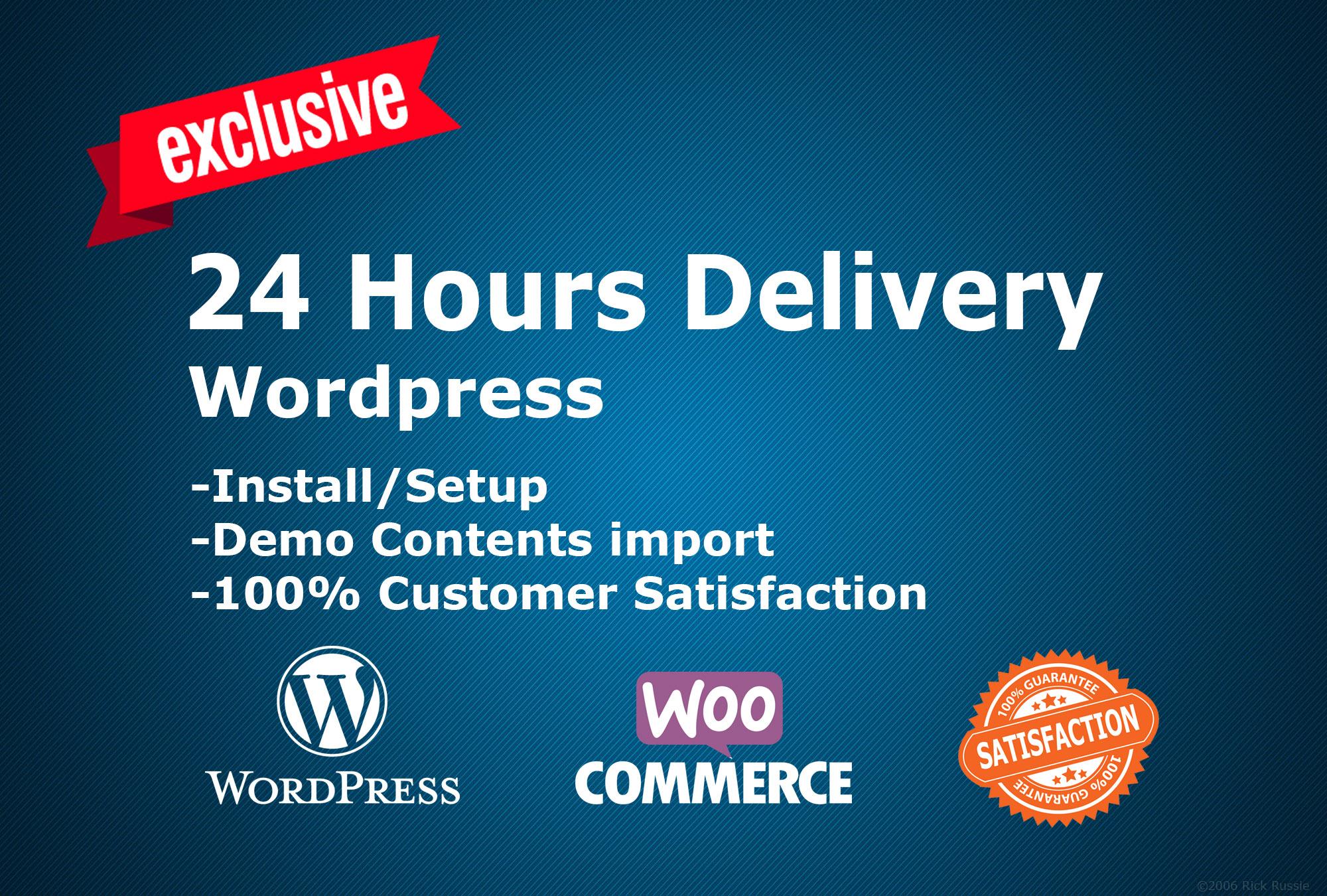 Install WordPress Theme and make same as demo