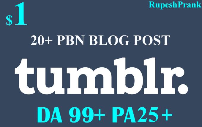 Manually Build 20+ PBN Links On DA99+ and PA25+