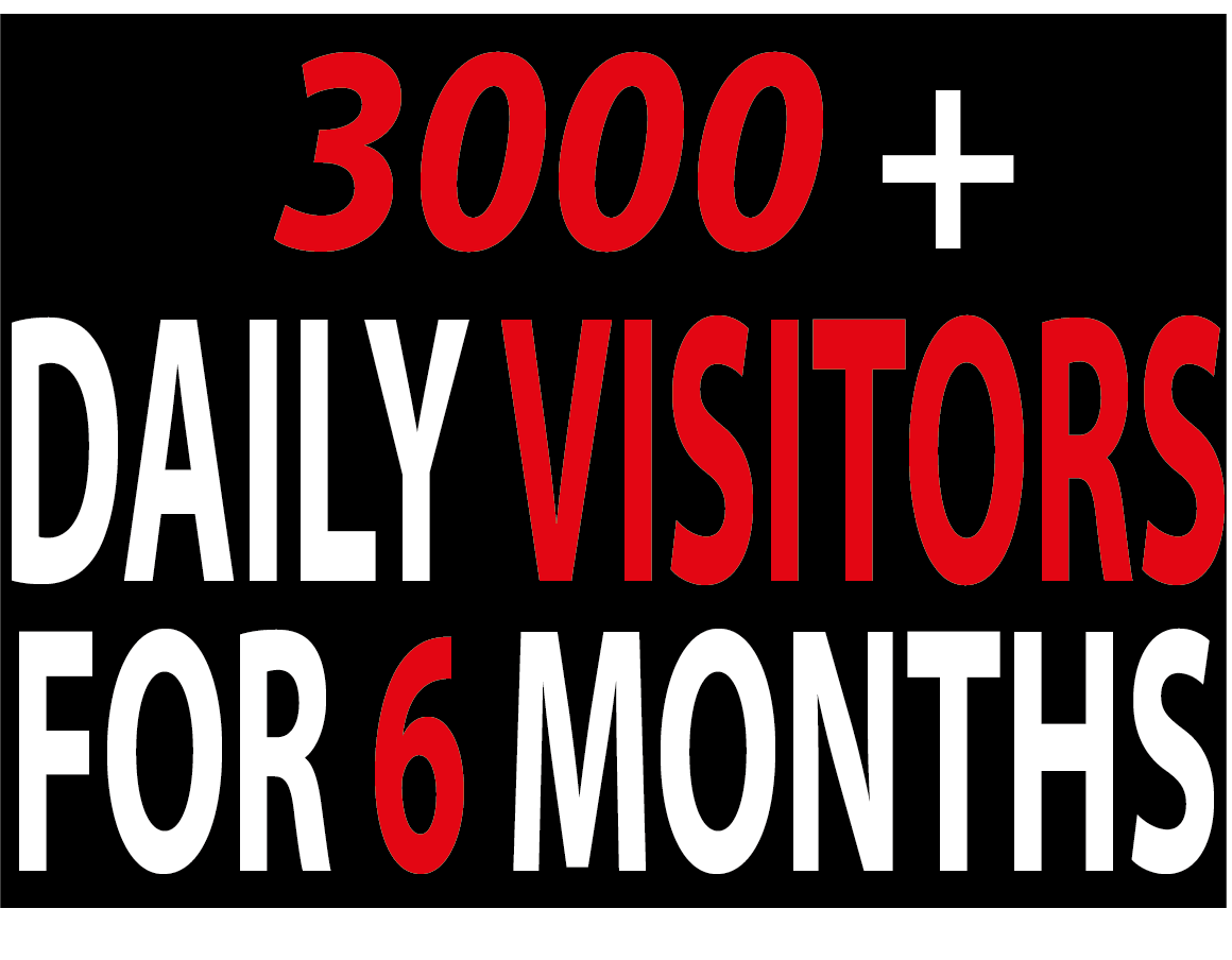 3000+ Daily traffic Visitors to Your website For 6 MONTHS BY Google Twitter Youtue and many more