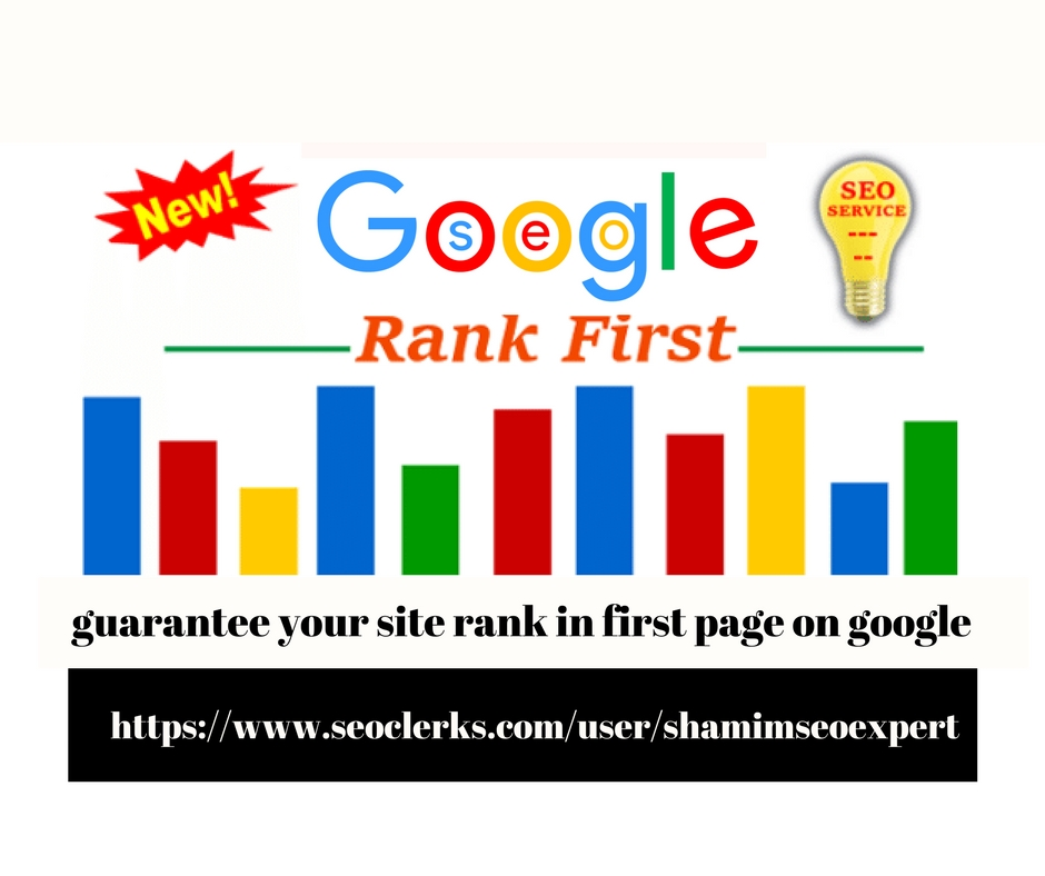 We Provide SEO And Guarantee Your Site Rank In First Page On Google
