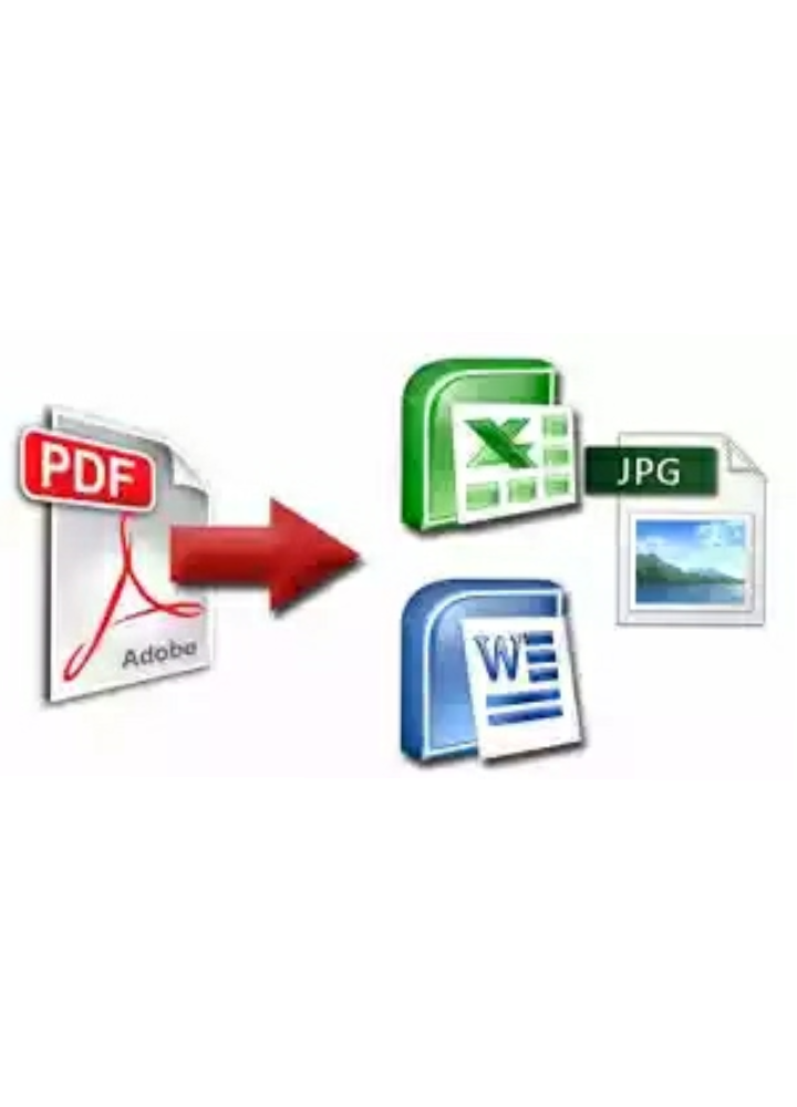 convert your pdf file to Word and Excel professionally for 5