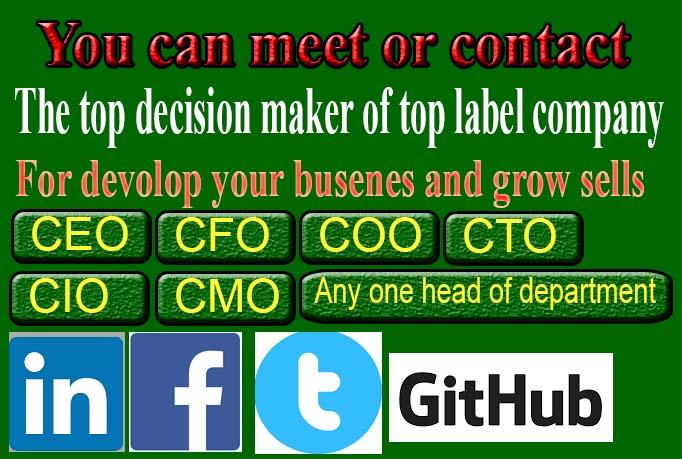Top C-label decision maker leads