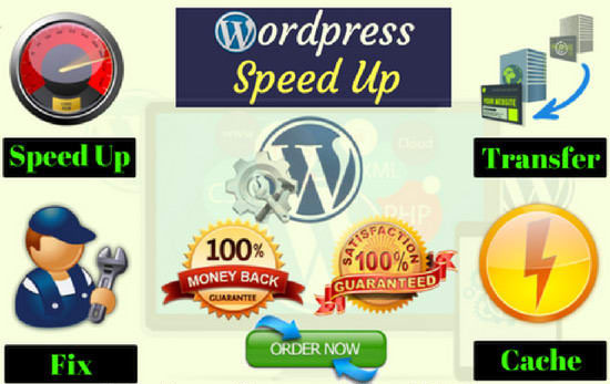 I will do speed up wordpress website, optimize wordp...