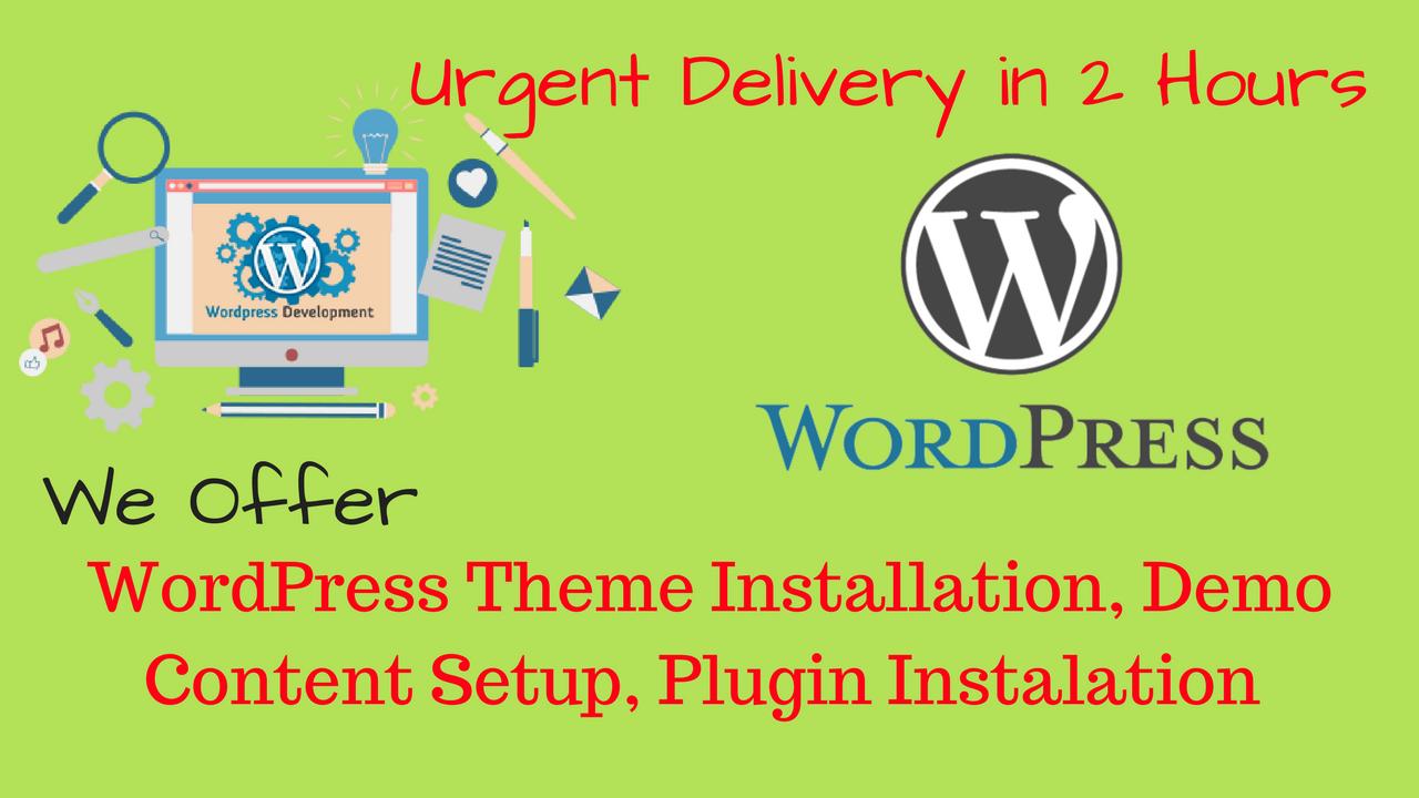 Wordpress Blog,  Theme,  And Plugin Instalation In 2 Hours
