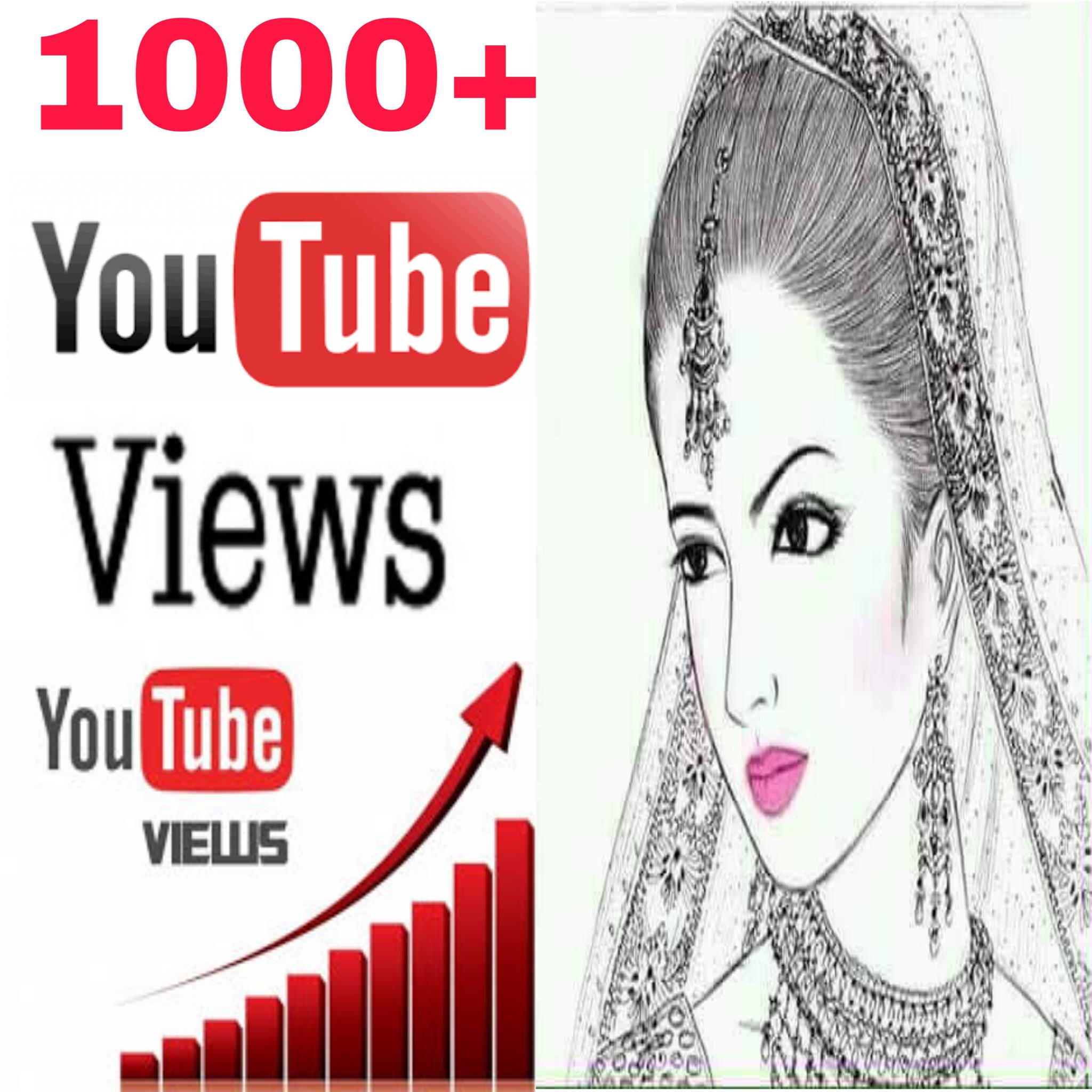 Guaranteed  High quality 1000+ non drop views 3 hours completed