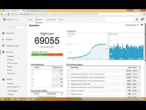 deliver 25,000 weekly real human visitors to your website
