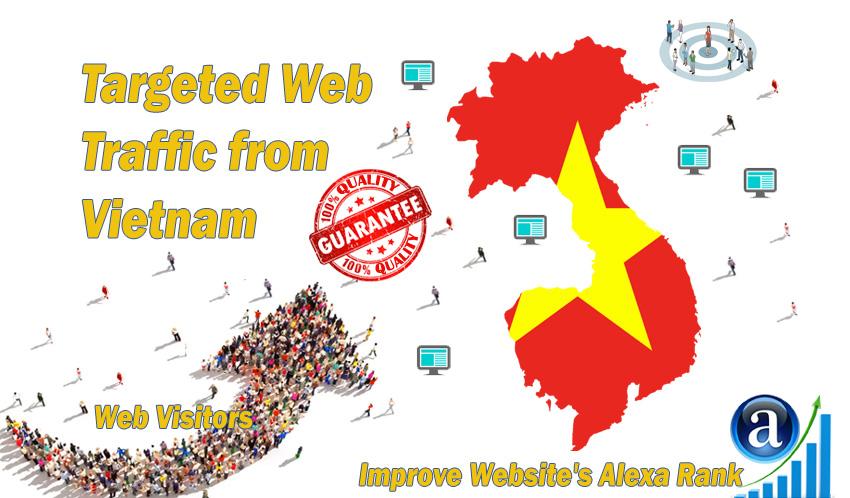 Vietnamese web visitors real targeted Organic web traffic from Vietnam