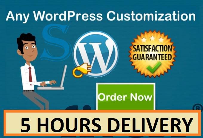 do any wordpress customization in 4hrs