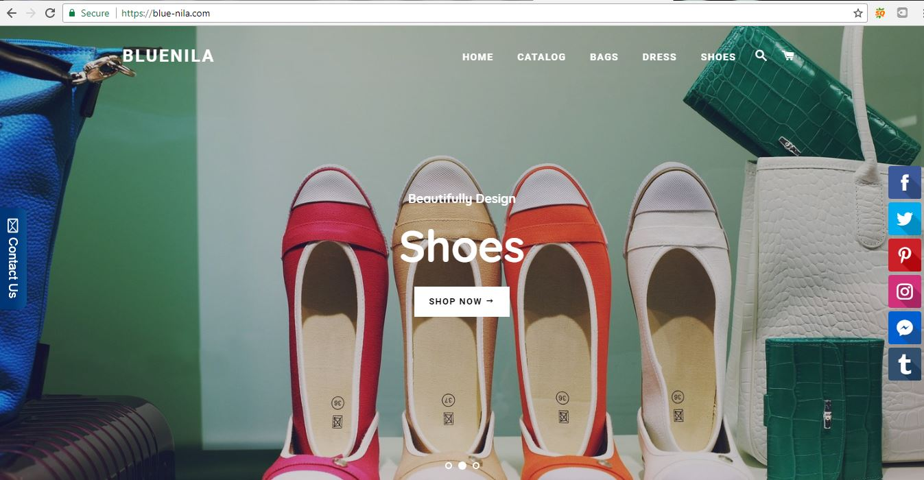 will create shopify dropship store with 30 top selling products