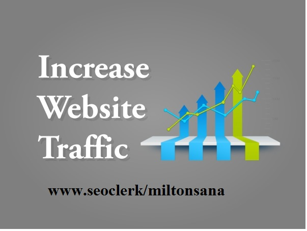 Drive 30000 real traffic for your website in 30 days
