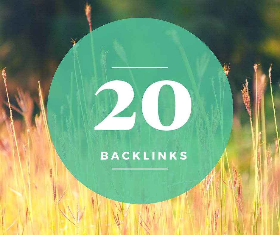 Manually Create 20 High PR2 to PR7 or DA 30+ Do-follow SEO Post Backlinks