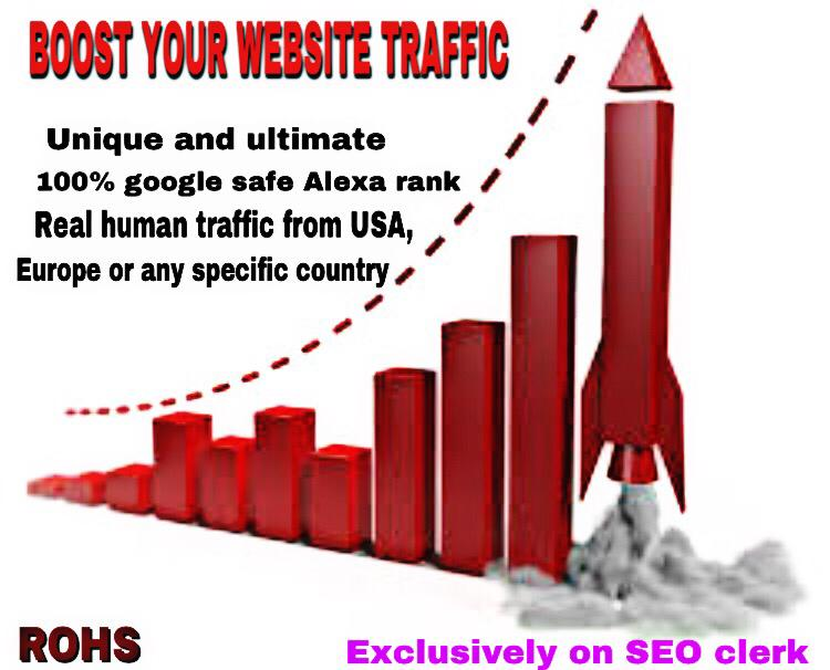 Get 10000 real human Traffic to your Website/blogs fo...