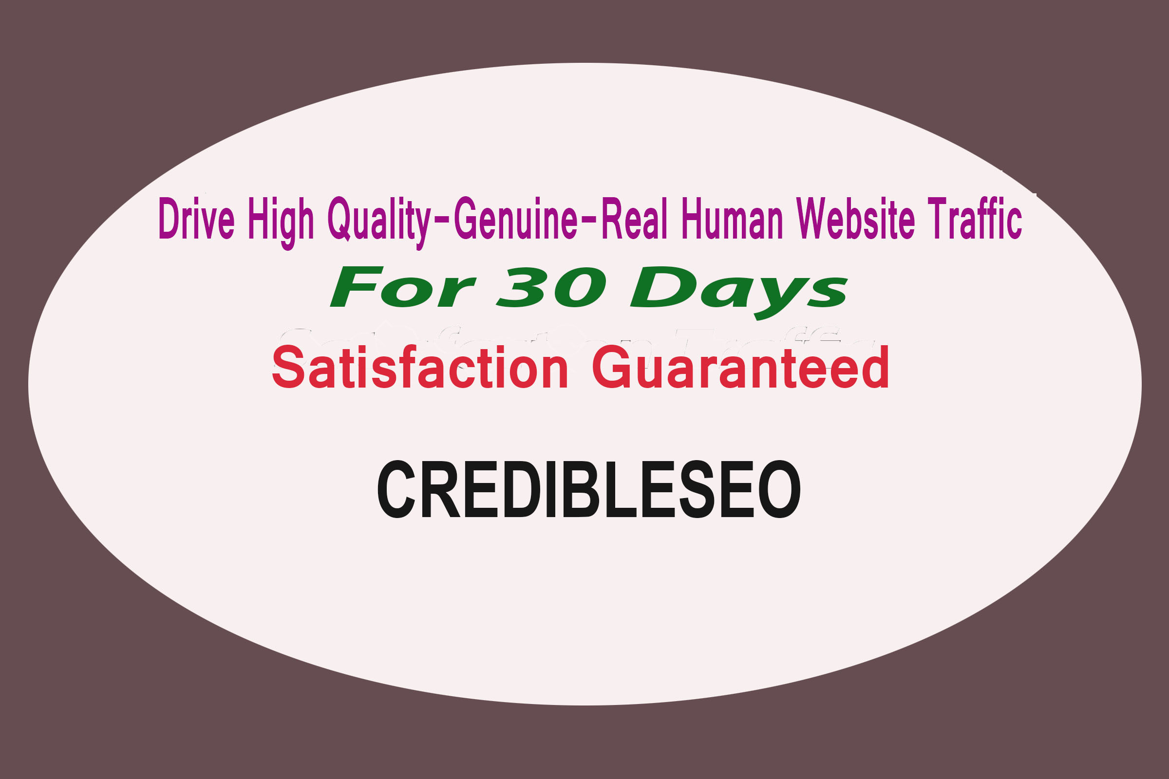Provide High Quality,Genuine,Real Human Website Traffic Visitor For 30 Days