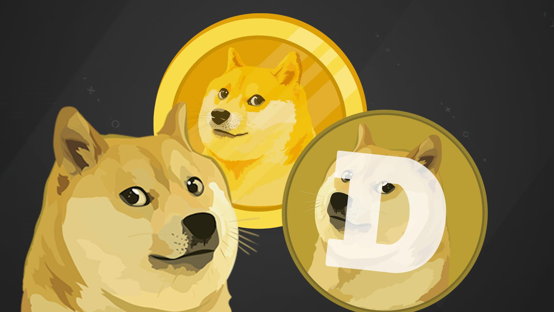 Buy 1000 Dogecoin (DOGE) Now!!!