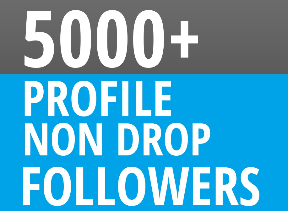 Start Instant 5000 Profile Followers HQ NON DROP SEO Service